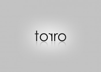 Torro products combine modern solutions, smart design and a decent price